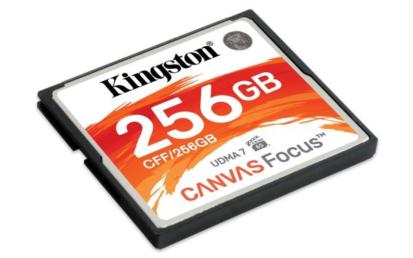 CFF/256GB 256GB