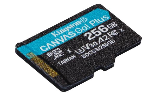 SDCG3/256GBSP microSDXC 256GB